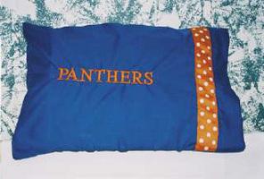 Sport Pillow